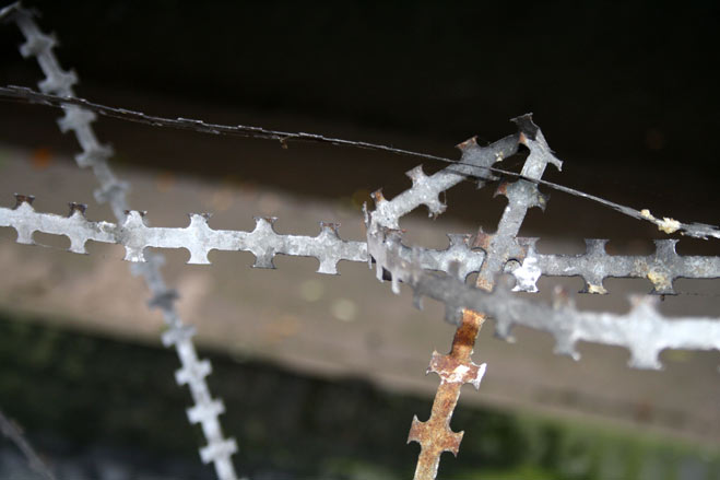 Barbed wire joined-up handwriting