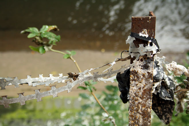Barbed wire vibration over River Rea